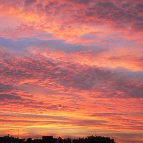 Pink_ Sunset.
