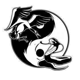 Discover Wing Chun