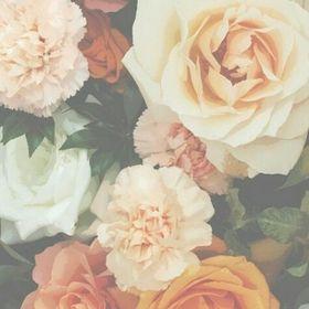 rosa campos