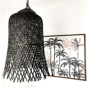 Coconut Interiors