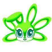 Medusa Rabbit