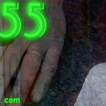 Survive55.com