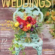 Weddings Illustrated