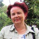 Merja Wallén
