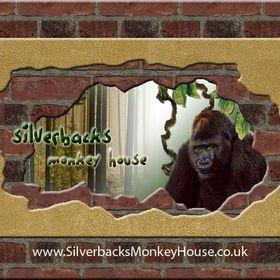 Silverbacks Monkey House