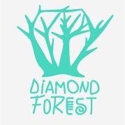 Diamond Forest