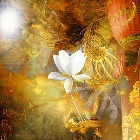 Source Light Distance Healing