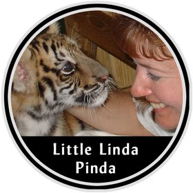 Little Linda Pinda, LLC