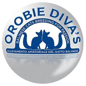 Orobie Diva's