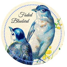 Faded BlueBird