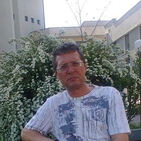 Carp Florin Gigel