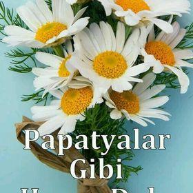 Meltem Erbay