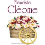 Fleuriste Cléome