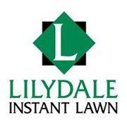 Lilydale Instant Lawn