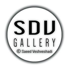 Saeed Veshveshadi Gallery
