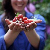 Naschen mit der Erdbeerqueen Kochen Backen Rezepte