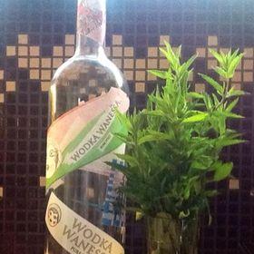 Wodka Wanessa magic potion