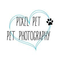 Pixel Pet Pet Photography