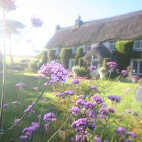 Putsborough Manor Holiday Cottages