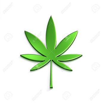 Cannabis Leaf Isolated on White Background. Concept of Medical