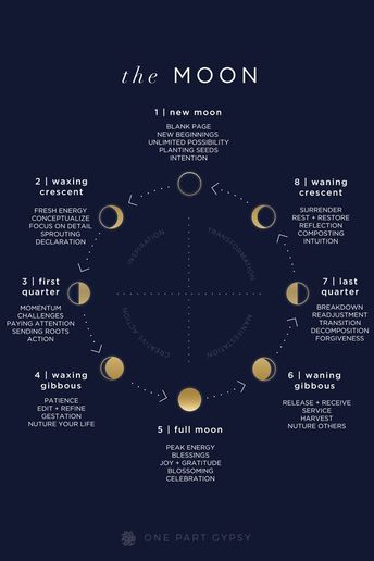 A guide to the lunar cycle- what each of the moon phases are called, what they indicate, and how to be most aligned with them.