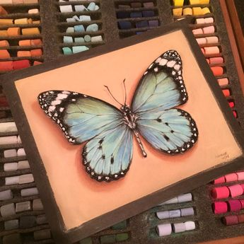 """""""Ode to turquoise. Butterfly"""" • Pastel on sanded paper, 20*25 • In private collection"""