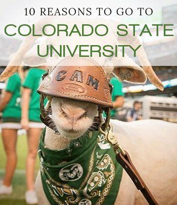 10 Reasons To Go To Colorado State University