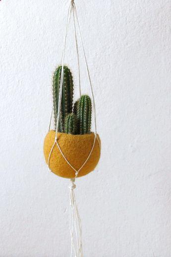 Macrame plant hanger | Hanging planter, Macrame planter, Plant holder, Air plant holder, Modern macrame, gift for her, gift for mom