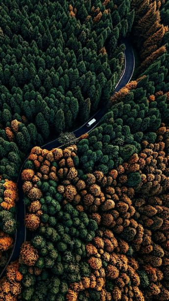 Gorgeous nature *** drone photography