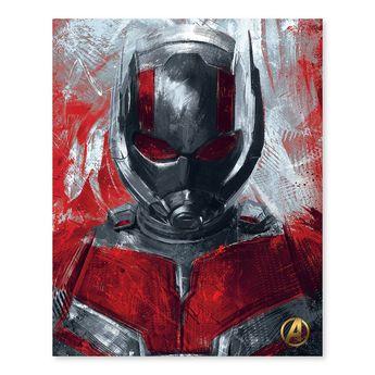 "Artissimo Designs Marvel Avengers Ant-Man Canvas Wall Art, 16""""X20"""""