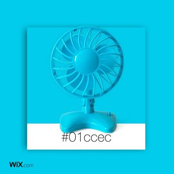 Color Palette Inspiration | Summer Breeze Blue | #01ccec