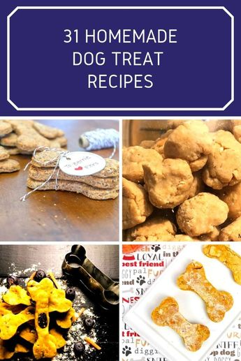 31 Dog Treat Recipes