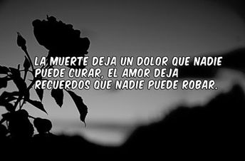 Frasesamor Imagenes De Rosas Negras Con Frases De Amor