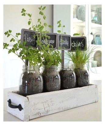 10 Indoor Garden Ideas to Cure the Winter Blues   Your Backyard Herb Garden   Herb Garden Container Ideas   Window Herb Garden   Herb Garden Container Lowes. #balconygarden #nature #organicgardening