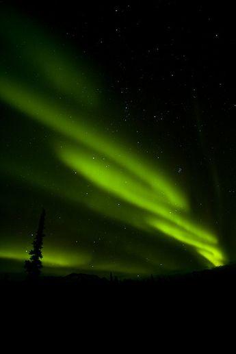 Aurora in Denali