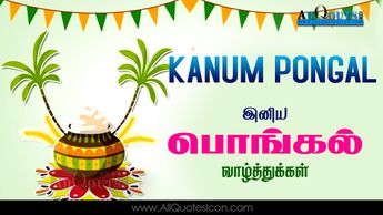 Best Kanum Pongal Wishes In Tamil Hd Wallpapers Inspiration