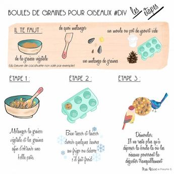 BOULES DE GRAINES POUR OISEAUX #DIY