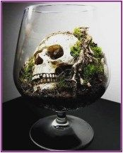 26+ Terrariums: Beautiful Enclosed Gardens You can Build at Home