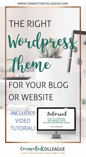 Choosing the right Wordpress Theme for your Blog or Website