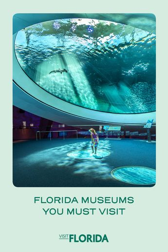 Florida Museums You Don't Want to Miss