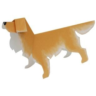 Golden Retriever,Animals,Paper Craft,Europe,United Kingdom [England],brown,Animals,Beginner series,dog,easy