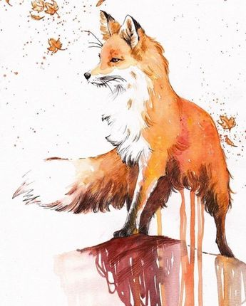 Fox Watercolor I need fox references help - art final exam to draw animals anD I lOve foxes
