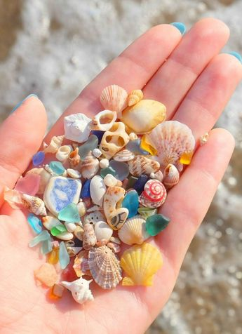 She Found These Beautiful And Ancient Things On The Beach