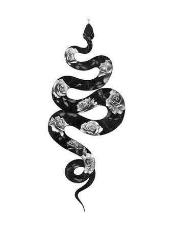 #illustration #illustrationart #drawings #silhouette #blackandwhite #art #artwork #snake #roses #inspiration #behance