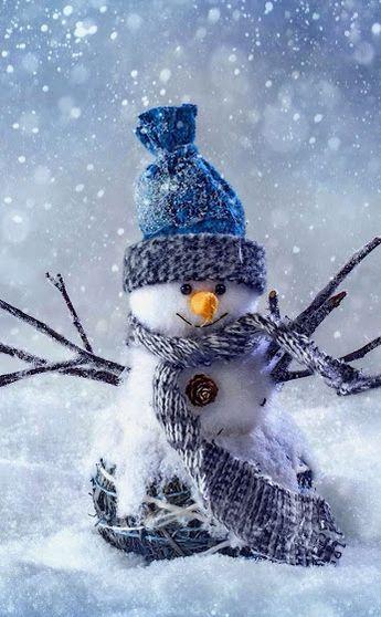 Même pas froid !!!                                                      …