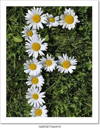 bcdbb7815278e Sunflowers and Daisies Fitted Tank Top Long Length