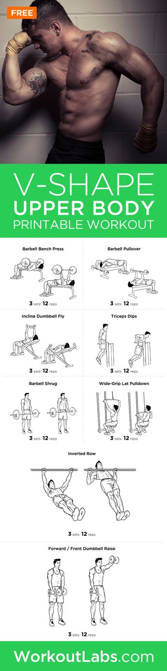 image regarding Spartacus Workout Printable called Chi Mogro person ytics Thpix