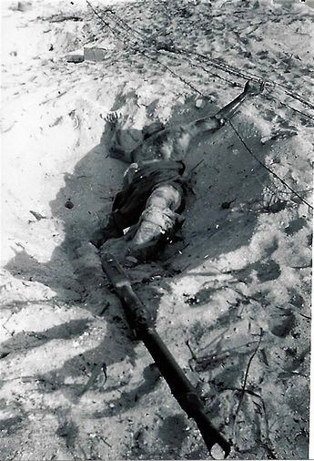 Thank you. Posting a Japanese casualty, Tarawa, 1943.