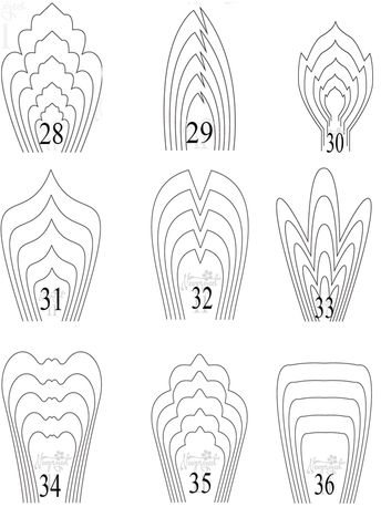 All 9 templates paper flower templates giant paper flower template 28-36