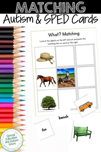 Matching Picture and Word Cards, Matching Worksheets for Autism, Speech Therapy
